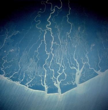 NASA Space Shuttle Overflight photo of the Niger Delta NASA