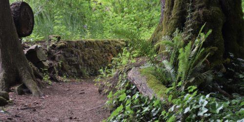 hermit's trail chemainus