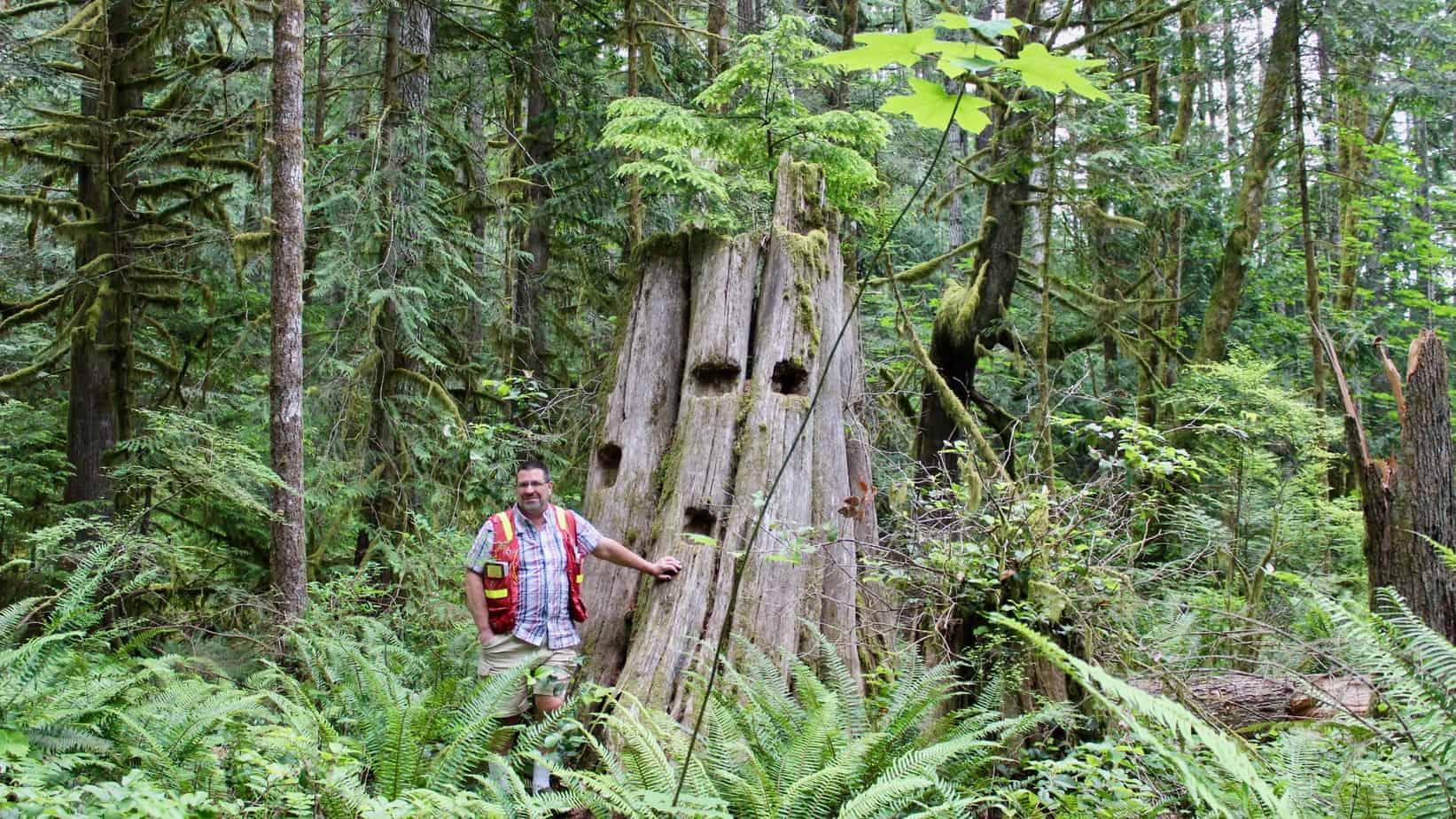Erik Piikkila cowichan forests